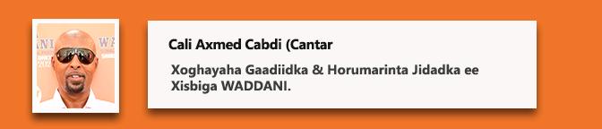 Cali Axmed Cabdi (Cantar)