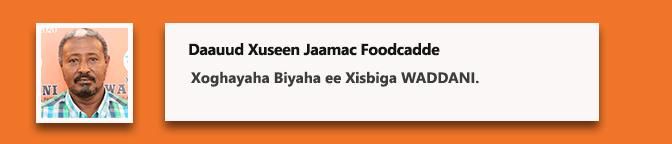 Daauud Xuseen Jaamac Foodcadde