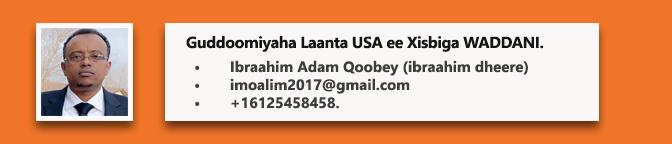 Ibraahim-Adam-Qoobey