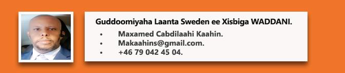 Maxamed Kaahin