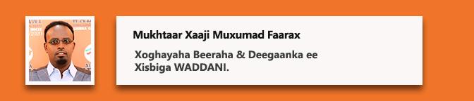 Mukhtaar Xaaji Muxumad Faarax