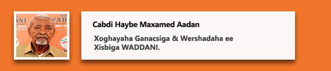 Cabdi Haybe Maxamed Aadan